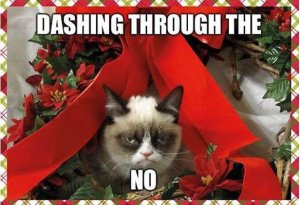 best-funniest-grumpy-cat-3