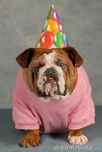 Happy Birthday Frankie!!!