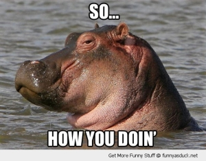funny-how-you-doin-hippo-joey-friends-pics